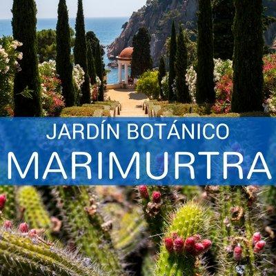 Jard n bot nico marimurtra en blanes gtmdreams for Jardin botanico cursos