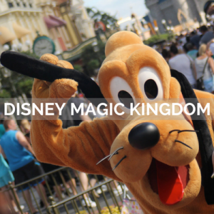 VISITAR DISNEY MAGIC KINGDOM